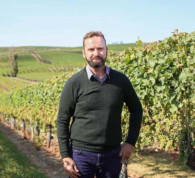 viticulture-4